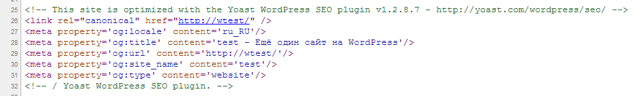 SEO Yoast shit in source code